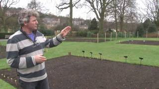Gordon's Grow Your Own Tips - Sowing the seeds - Allotment Life at the Horniman Museum