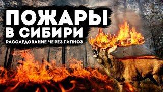 Пожары в Сибири. Расследование через гипноз!