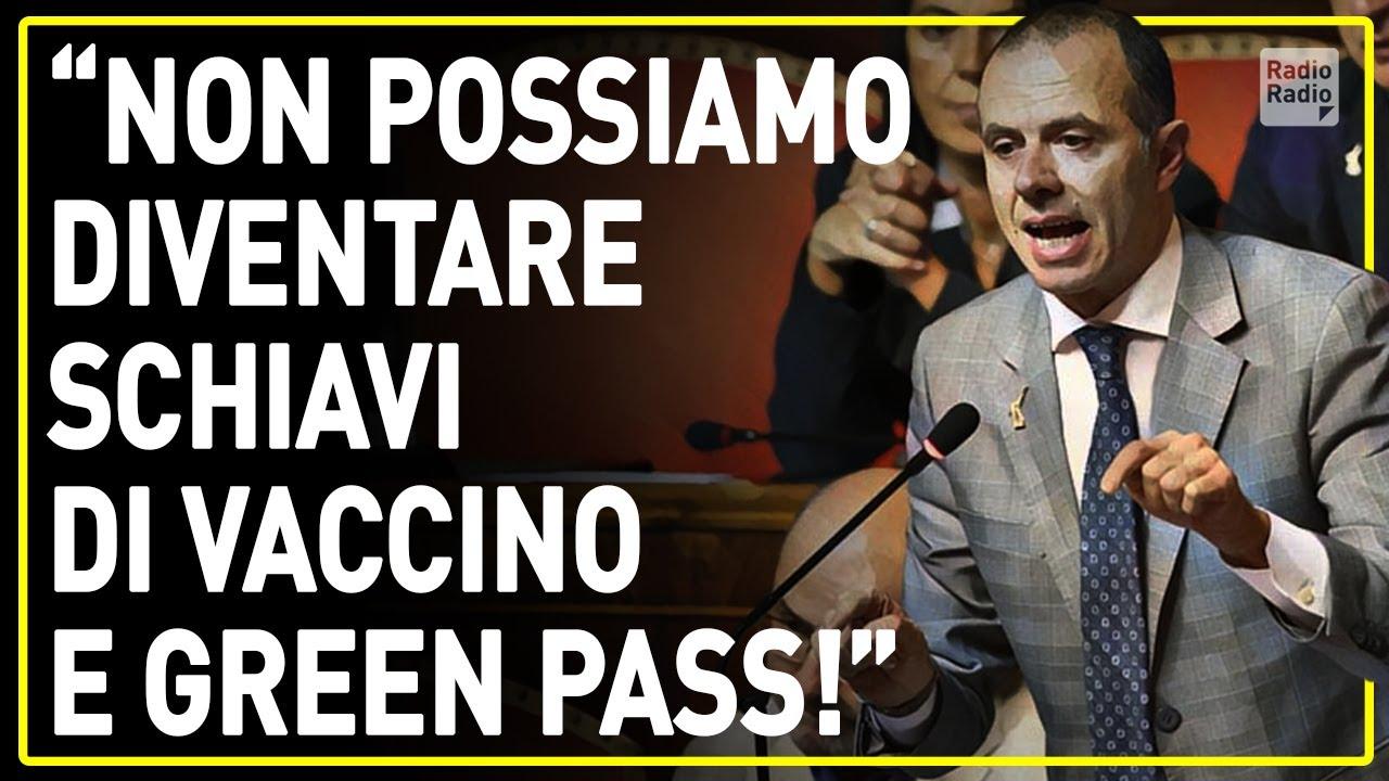"""ROMEO AVVERTE AL SENATO ▷ """"CARO DRAGHI, NON POSSIAMO DIVENTARE SCHIAVI DI UNA PUNTURA!"""""""