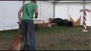 Steve Mann - Dog Training.mp4