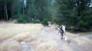The Nose of El Cap, Walking the Pig, 2007