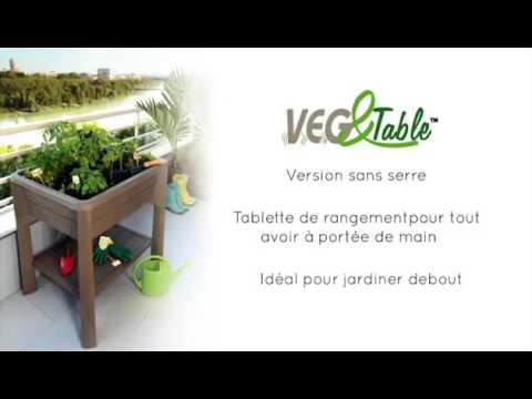 EDA - Espace potager Vegetable City Gris foncé 79x59x80CM 67Litres ,  potager plastique