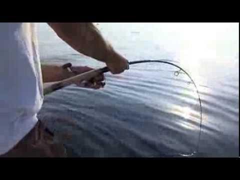 Italian Fishing TV - Shimano - Drifting con Stella Saltwater