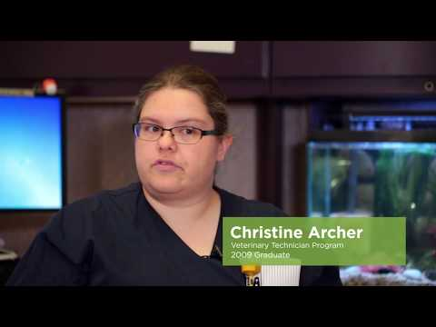 Critter care: Welcome to vet tech Christine Archer's animal house