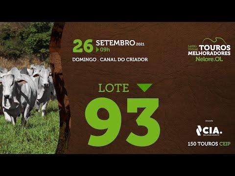 LOTE 93 - LEILÃO VIRTUAL DE TOUROS 2021 NELORE OL - CEIP