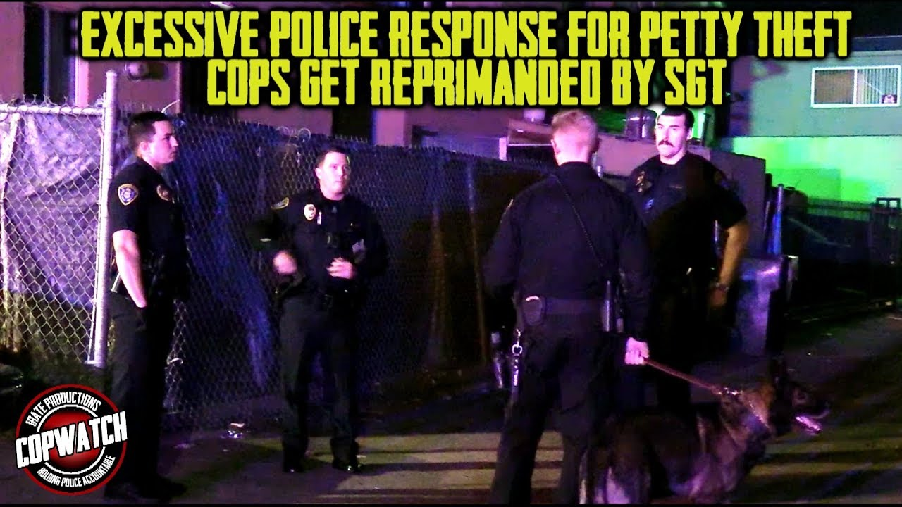 Excessive Police Response for Petty Theft | Cops Get Reprimanded by Sgt. | Copwatch