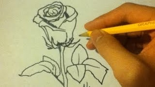 How to Draw a Rose Easy|On Paper|For Beginners|an open rose|Step By Step