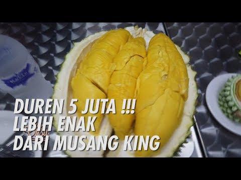 The Onsu Family - DUREN 5 JUTA !! LEBIH ENAK DARI MUSANG KING !!
