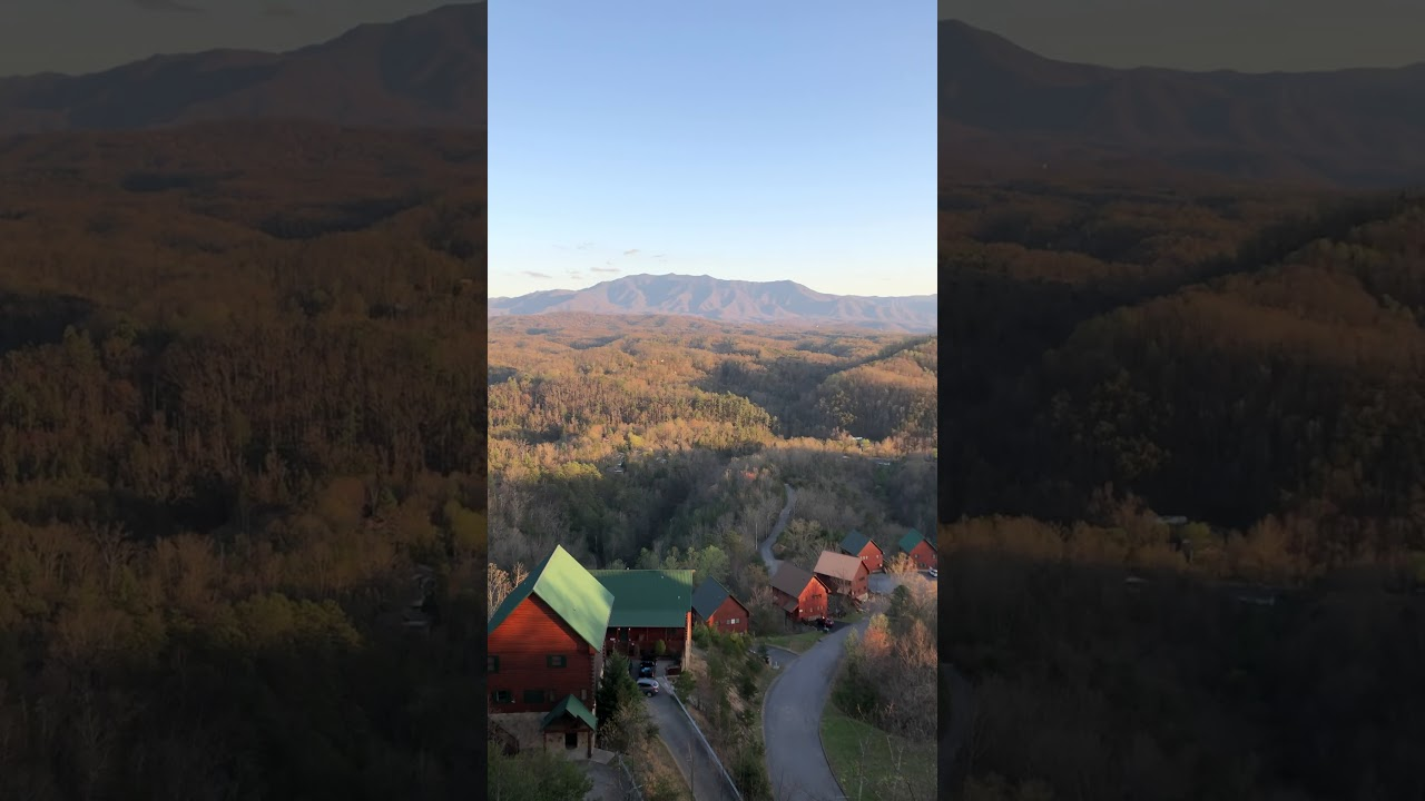 Outrageous Cabin Bearly Awake View