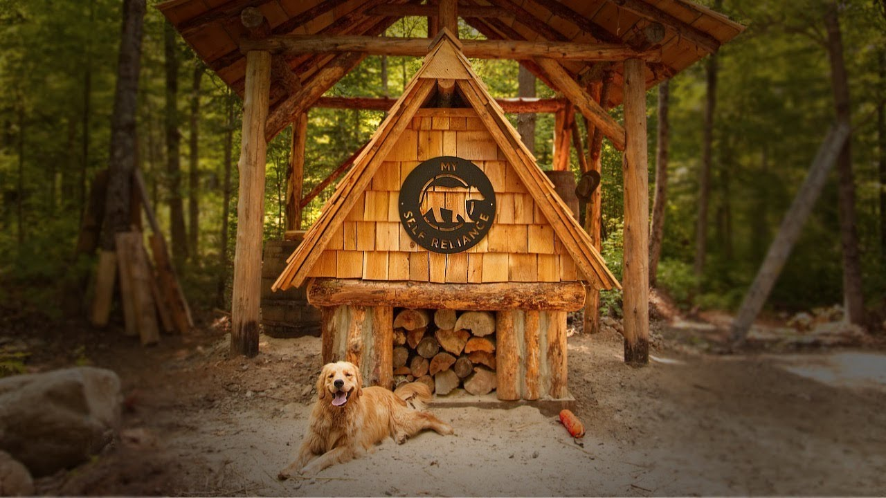 not-alone-with-my-dog-at-the-log-cabin-wild-edibles-wild-life-hugelkultur