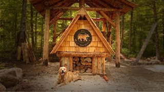 NOT Alone with My Dog at the Log Cabin, Wild Edibles, Wild Life, Hugelkultur
