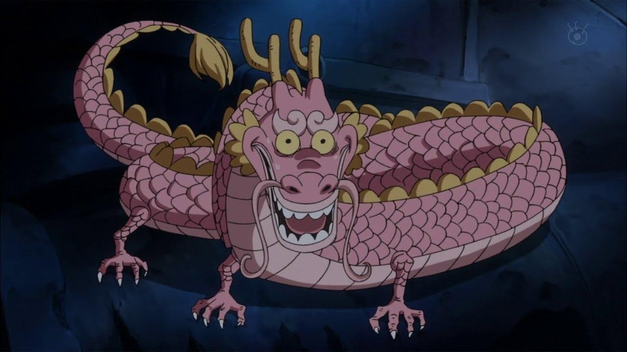 has luffy meet dragon yet