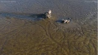 Photographer rescues eagle trapped in mud