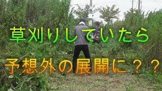 【依頼】草刈りしていると予想外の展開に?