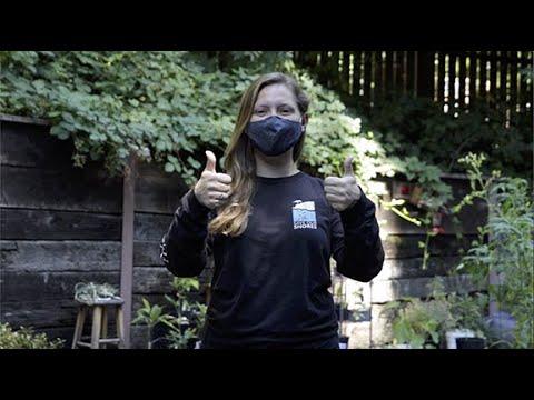 video:Limpieza de las Costas Anual