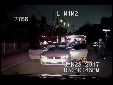 Seattle Police, dui stop, lost dog, idiocy