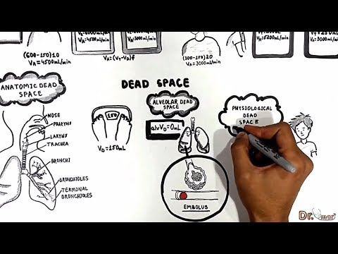 Dead Spaces (Anatomic, Physiologic, Alveolar)