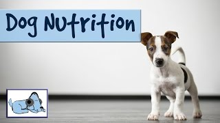 Dog Nutrition - Tips On What To And What Not To Feed Your Dog/puppy!