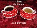 O Floare O Cafea Si O Zi Frumoasa mp3