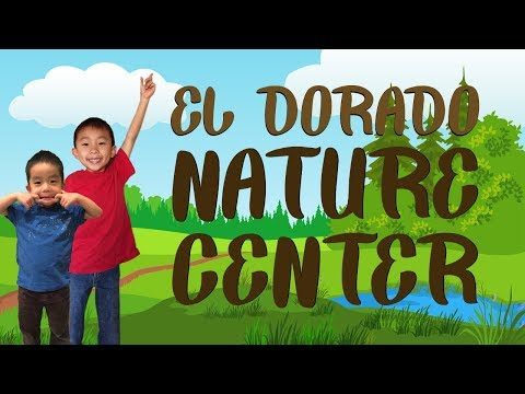 El Dorado Nature Center (Things to do in Long Beach California): Traveling with Kids