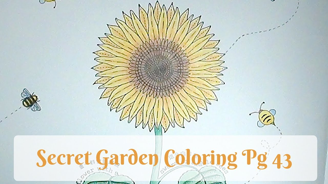 Colorvlog Speed Coloring Secret Garden Page 43
