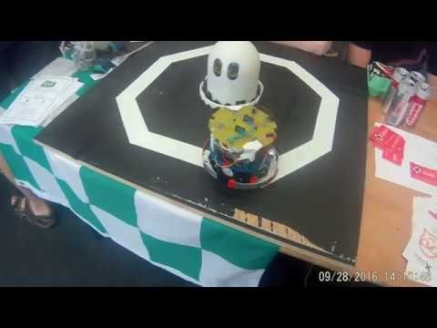 Electronic & Electrical Engineering robots