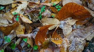 UNIDAD: Meditacion Guiada de 10 Minutos | A.G.A.P.E. Wellness