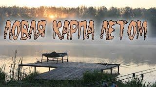 смотреть видео про рыбалку карп