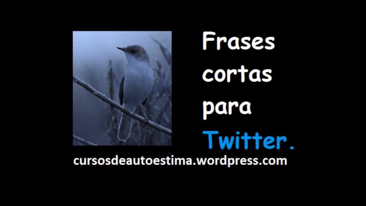 Frases Cortas Para Twitter