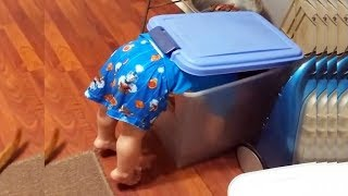 FUNNY FAILS of BABIES and KIDS you can't watch without LAUGHING! - TODDLER Fails Compilation 20