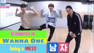 Video 12 minutes of Wanna One being a MESS download MP3, 3GP, MP4, WEBM, AVI, FLV Agustus 2017
