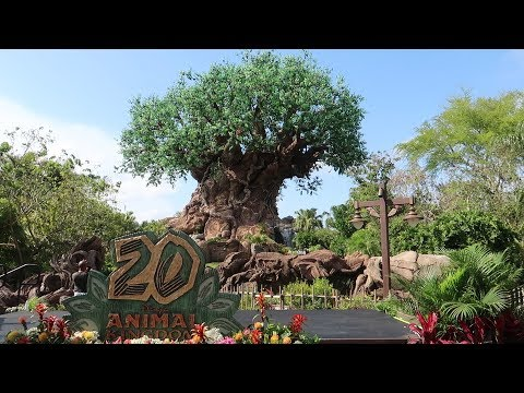 Disney's Animal Kingdom 20th Anniversary Party For The Planet | New Merch, Food & Up Show!