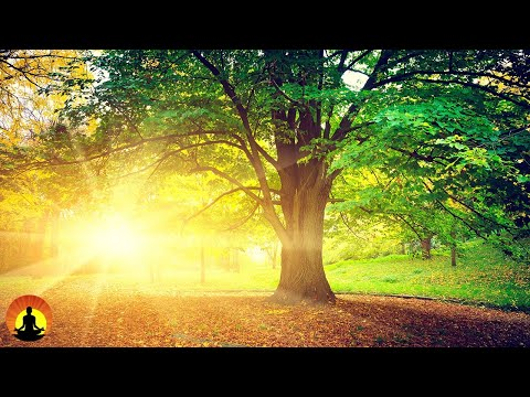 Relaxing Music, Meditation, Sleeping Music, Calm Music, Heal