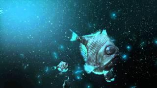 Deep Ocean Experience 3D - TRAILER