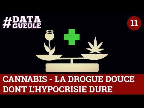 Cannabis, la drogue douce dont l'hypocrisie dure - #DATAGUEULE 11
