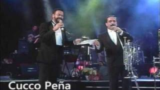 IDILIO. WILLIE COLON EN EL ROBERTO CLEMENTE P.R. 1993.wmv