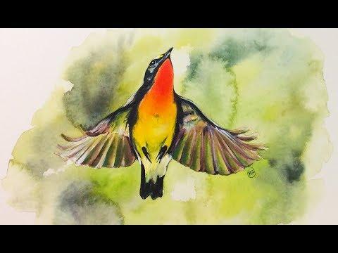 Sarah's Bird Watercolor Painting Demo