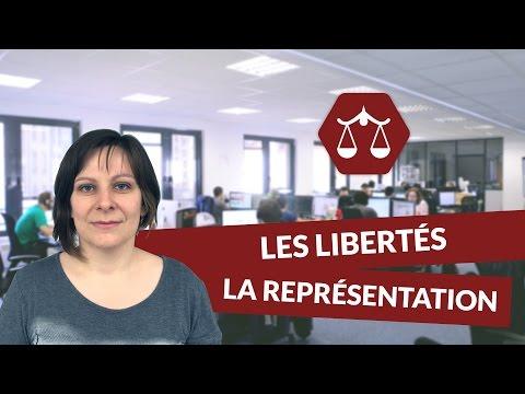 Les libertés individuelles et collectives : la représentation - STMG Droit - digiSchool
