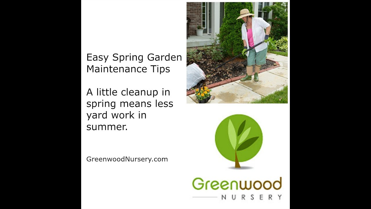 Easy Spring Garden Maintenance Tips