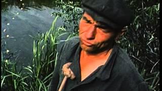 2 часть - фрагменты фильмов о Чернобыле (реж. Роллан Петрович Сергиенко)