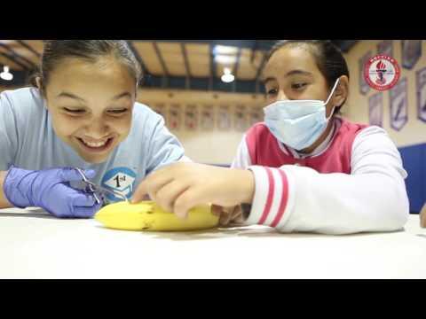 La Grulla Middle School Health Professions CAMP, April 1st, 2016.