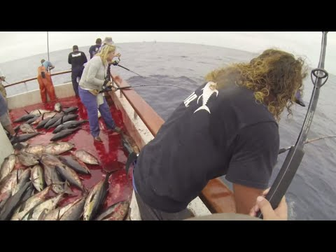 Independence Sportfishing - 7 day - Sept 14-21,2013 FULL VIDEO w/MUSIC