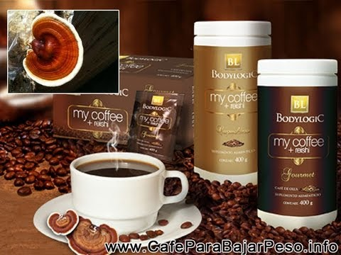 Hongo Ganoderma Beneficios
