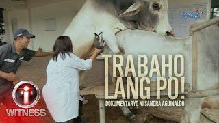 i witness trabaho lang po a documentary by sandra aguinaldo full episode