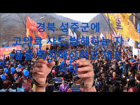 대한민국 사드미사일 설치 찬성 ( We welcome US THAAD missiles' deployment to Korea.