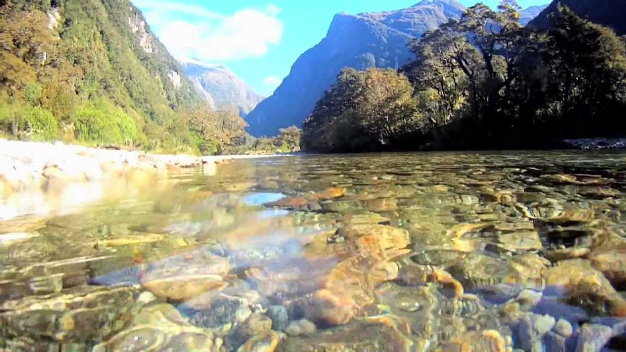 Milford Track - New Zealand Great Walks Track - New ...