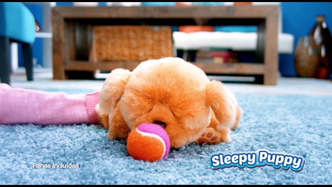 Live Sleepy Puppy Youtube Little Pets TK1lFJc3
