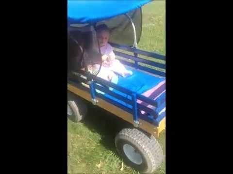 Electric RC Beach cart