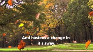 The Winds of Autumn   by Robert Joyce