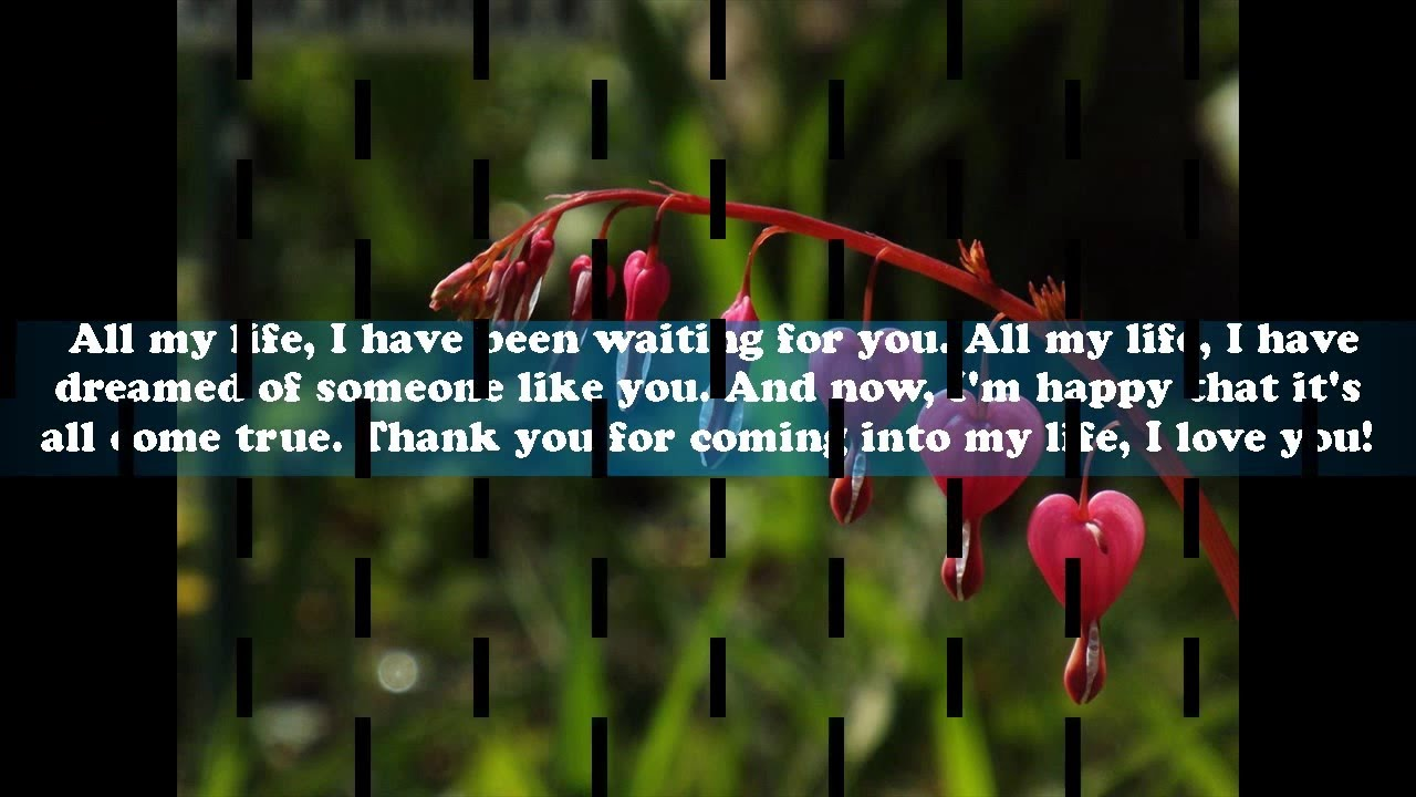 Love Of My Life Quotes For Her Love Quotes For My Wife Love Quotes For Her From The Heart  Youtube